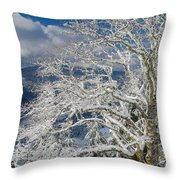 Snow Covered Tree And Winter Scene Throw Pillow