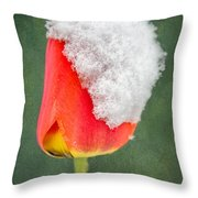 Snow Covered Tulip Throw Pillow