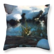 Snow Covered Waterscape Throw Pillow