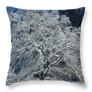 Snow Covered Winter Throw Pillow