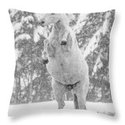 Snow Dancer Throw Pillow