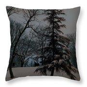 Snow Day Hued Throw Pillow