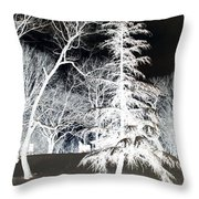 Snow Day Inverted Throw Pillow