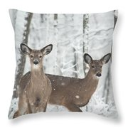 Snow Deer Throw Pillow