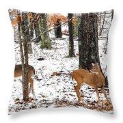 Snow Doe's 1 Throw Pillow