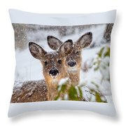 Snow Does Throw Pillow