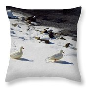 Snow Ducks Throw Pillow