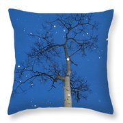 Snow Falling Where The Leaves Used To Be  Ethe  Throw Pillow