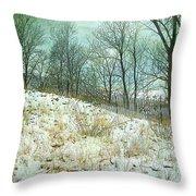 Snow Fence Beach Dune Throw Pillow