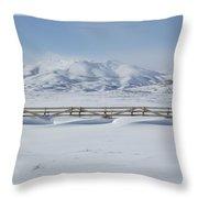Snow Fence Sculpted Snow Throw Pillow