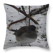 Snow Finch Throw Pillow