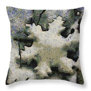 Snow Flake 04 Photo Art Throw Pillow