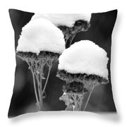 Snow Flowers Bw Throw Pillow