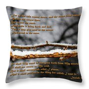 Snow From Heaven Throw Pillow
