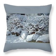 Snow Frosted Bush Throw Pillow