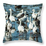 Snow Geese Discussion Throw Pillow