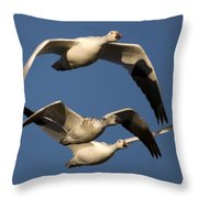 Snow Geese Flying Throw Pillow