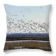 Snow Geese Taking Off At  Loess Bluffs National Wildlife Refuge Throw Pillow