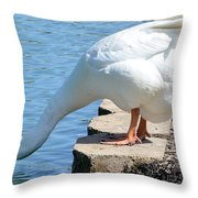 Snow Goose 2 Throw Pillow