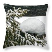 Snow Hill Throw Pillow