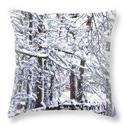 Snow-img-2174-merry Christmas Throw Pillow