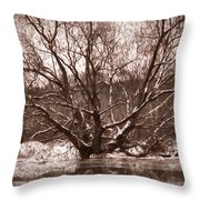Snow Imp 1 - Tree Covered With Snow January 2014 Throw Pillow