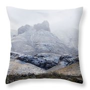 Snow In Big Bend Throw Pillow