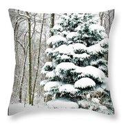 Snow In Ohio Throw Pillow