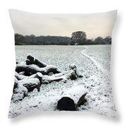 Snow In Surrey England Throw Pillow