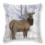 Snow In The Face  Throw Pillow