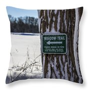 Snow In The Meadow Throw Pillow by Andrew Pacheco