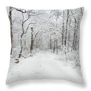 Snow In The Park Throw Pillow by Raymond Salani III