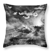 Snow Is In The Air Bw Throw Pillow