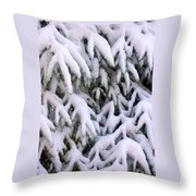 Snow Laden Branches Throw Pillow