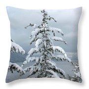 Snow Laden Tree Throw Pillow