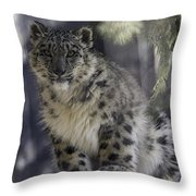 Snow Leopard 1 Throw Pillow