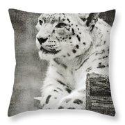 Snow Leopard 2 Throw Pillow