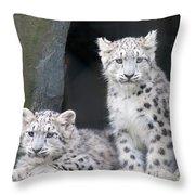 Snow Leopard Cubs Throw Pillow