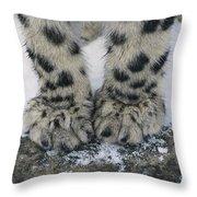 Snow Leopard Feet Throw Pillow