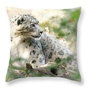 Snow Leopard Pose Throw Pillow