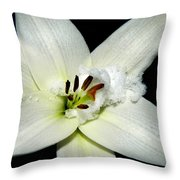 Snow Lilly Throw Pillow