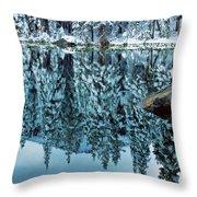 Snow Mirror Throw Pillow