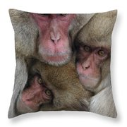 Snow Monkey And Young Throw Pillow