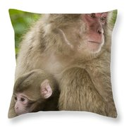 Snow Monkeys, Mother With Her Baby Throw Pillow