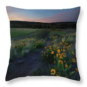 Snow Mountain Trail Throw Pillow