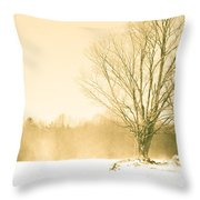 Snow Of Old Throw Pillow