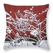 Snow On Burdock Burr Weed Against Red Barn Siding Throw Pillow