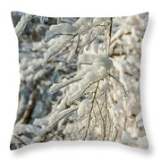 Snow On Ice Throw Pillow