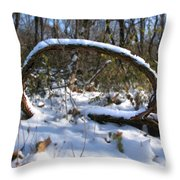Snow Portal A Fallen Vine Forms An Oval Shape Covered In Snow. Throw Pillow
