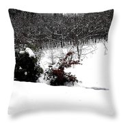 Snow Scene 6 Throw Pillow